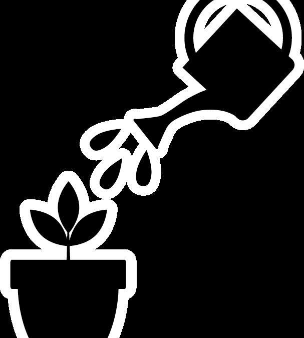 Op welke vruchtbare grond groei jij?